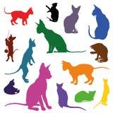 Sistema de siluetas de los gatos en diversos colores ilustración del vector