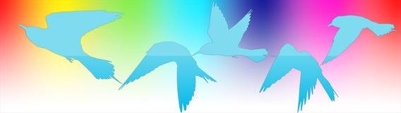 Sistema de siluetas de pájaros como paquete para los dulces Fotos de archivo libres de regalías