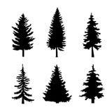 Sistema de siluetas negras de los árboles de pino en el fondo blanco ilustración del vector