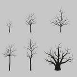 Sistema de siluetas negras de los árboles del vector sin las hojas Fotografía de archivo libre de regalías