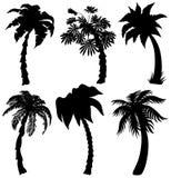 Sistema de siluetas tropicales de la palma stock de ilustración