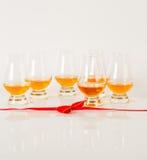 Sistema de sola malta que prueba los vidrios, solo whisky de malta en glas Imagen de archivo