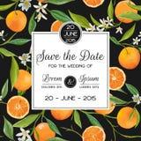 Sistema de tarjeta de la invitación/de la enhorabuena - para casarse, fiesta de bienvenida al bebé Fotos de archivo