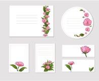 Sistema de tarjetas con las flores frescas del verano fotografía de archivo