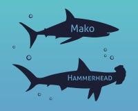 Sistema de tiburones de las siluetas aislados en fondo del mar Foto de archivo libre de regalías