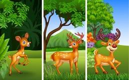 Sistema de tres animales de los ciervos con el fondo de la naturaleza stock de ilustración