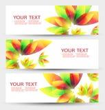 Sistema de tres banderas del vector de la naturaleza con los elementos florales y del lugar para el texto stock de ilustración
