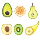 Sistema de una diversa fruta Fotos de archivo libres de regalías