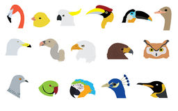 Sistema de vectores y de iconos de los pájaros Fotografía de archivo libre de regalías