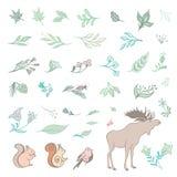 Sistema de verano Forest Design Elements Imágenes de archivo libres de regalías