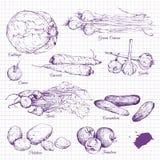 Sistema de verduras del dibujo de tiza Imagenes de archivo