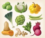 Sistema de verduras exóticas Foto de archivo libre de regalías