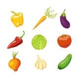 Sistema de verduras frescas jugosas Ilustración del Vector