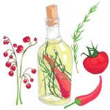 Sistema de verduras rojas, de aceite en una botella y de bayas Imagenes de archivo