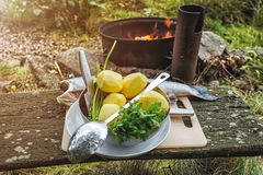 Sistema de verduras y de pescados al aire libre en el bosque, preparándose para cocinar en el fuego abierto Foto de archivo libre de regalías