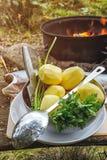 Sistema de verduras y de pescados al aire libre en el bosque, preparándose para cocinar en el fuego abierto Imagenes de archivo