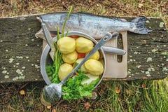 Sistema de verduras y de pescados al aire libre en el bosque, preparándose para cocinar en el fuego abierto Fotografía de archivo