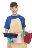 Sistema de Woman With Cleaning del ama de casa Imagen de archivo