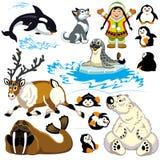 Sistema del ártico de la historieta stock de ilustración
