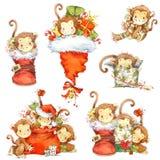 Sistema del año del mono mono divertido de la historieta Mono de la acuarela y elementos de la decoración del Año Nuevo Imagen de archivo