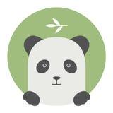 Sistema del animal Retrato en gráficos planos - panda Fotografía de archivo libre de regalías
