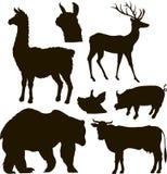 Sistema del animal del vector stock de ilustración