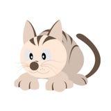 Sistema del applique de la historieta, gato que se agacha Foto de archivo libre de regalías