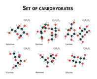 Sistema del azúcar del carbohidrato Fotografía de archivo