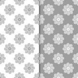 Sistema del blanco y del gris de fondos florales Modelos inconsútiles Fotos de archivo libres de regalías