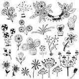 Sistema del bosquejo de la flor Imágenes de archivo libres de regalías