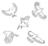 Sistema del bosquejo de pájaros de vuelo stock de ilustración