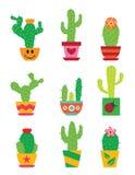 Sistema del cactus Fotografía de archivo