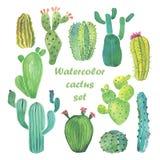 Sistema del cactus de la acuarela Imagen de archivo