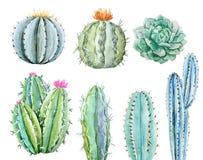 Sistema del cactus de la acuarela stock de ilustración
