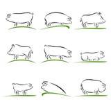 Sistema del cerdo Vector Imagen de archivo libre de regalías