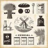 Sistema del cereal del vintage ilustración del vector