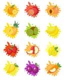Sistema del chapoteo de las frutas de etiquetas La fruta salpica, cae el emblema Imagenes de archivo
