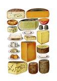 Sistema del clip art del queso de la comida del vintage ilustración del vector