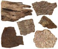Sistema del collage de la corteza secada y partes del tronco de árbol de pino aislado Imagen de archivo