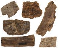 Sistema del collage de la corteza secada y partes del tronco de árbol de pino aislado Foto de archivo libre de regalías