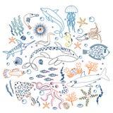 Sistema del concepto de pescados lindos de los animales de mar Línea ejemplo del esquema del color del vector Imagen de archivo libre de regalías