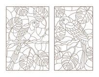 Sistema del contorno con los ejemplos con los loros de los pájaros y las hojas de las plantas tropicales, contornos oscuros en el stock de ilustración