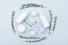 Sistema del cosmético natural orgánico adornado con la opinión superior de la hoja verde del eucalipto estilo plano de la endecha fotografía de archivo libre de regalías