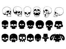 Sistema del cráneo ilustración del vector