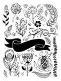 Sistema del dibujo de bosquejo de las flores, de las ramas, de la frontera y de la cinta del garabato ilustración del vector
