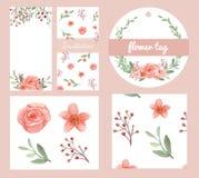 Sistema del diseño de las flores y de las hojas Stock de ilustración