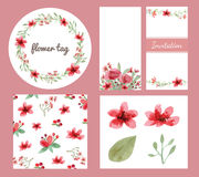 Sistema del diseño de las flores y de las hojas Imagenes de archivo