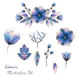 Sistema del diseño floral de la acuarela stock de ilustración