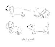 Sistema del ejemplo lindo del perro basset en diversas actitudes stock de ilustración