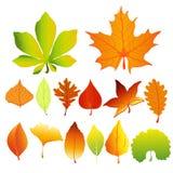 Sistema del ejemplo del vector colores y formas coloridos y brillantes de las hojas de otoño de diversos en estilo plano de la hi ilustración del vector